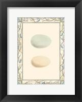 Framed Antique Eggs I