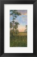 Tropical Serenity II Framed Print