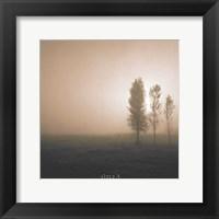 Bordeaux Trees Framed Print