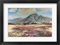 Framed Desert in Spring