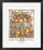 Framed January/Twelve Months of Fruits, 1732