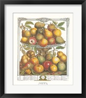 February/Twelve Months of Fruits, 1732 Framed Print