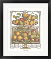 Framed March/Twelve Months of Fruits, 1732