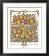 Framed April/Twelve Months of Fruits, 1732
