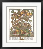 Framed June/Twelve Months of Fruits, 1732