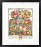 Framed September/Twelve Months of Fruits, 1732