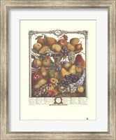 Framed November/Twelve Months of Fruits, 1732
