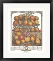 Framed December/Twelve Months of Fruits, 1732