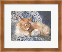 Framed Punkin the Cat