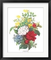Framed Antique Camellias & Hydrangeas