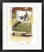 Framed Leaf Study IV