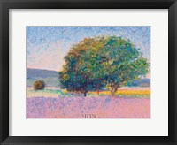 Trees in Provence Framed Print