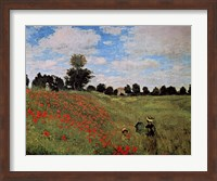 Framed Corn Poppies
