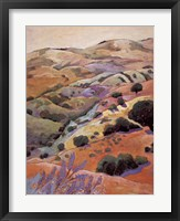 Spectacular View Framed Print