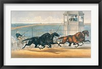 Great Double Team Trot Framed Print