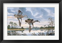 Framed Blue Wings in Flight