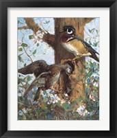 Framed Spring (Wood Ducks)