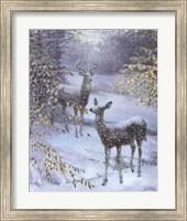 Framed Early Snow