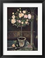 Framed Rose Topiary