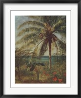 Framed Palm Tree, Nassau