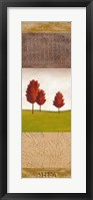 Autumn Light III Framed Print