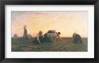 Framed Weeders, 1860