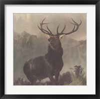 Framed Monarch of the Glen