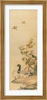 Framed Mandarin Duck