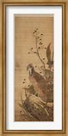 Framed Bird on Embankment