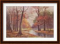 Framed Autumn Glade