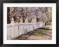Framed Spring Walk