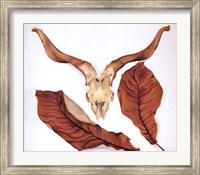Framed Ram's Skull with Brown Leaves