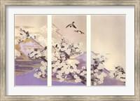 Framed Chrysanthemums