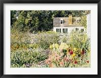 Framed Late Summer Garden