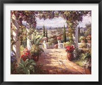 View from Terrace Framed Print