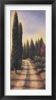 Framed Tuscan Road I