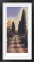 Tuscan Road II Framed Print