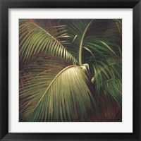 Framed Tropical Seclusion