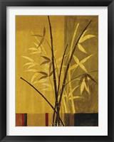 Framed Bamboo Impressions II