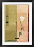 Framed Single White Tulip