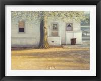 Framed Sunlit Oak