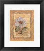 Grandi Flora Framed Print
