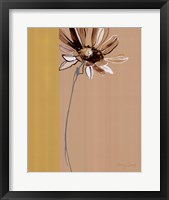 Framed Simplicity 1