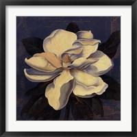 Framed Glowing Magnolia