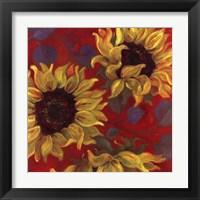 Framed Sunflower II