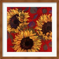 Framed Sunflower I
