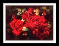 Framed Roses Are Red