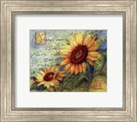 Framed Sunflowers On Blue