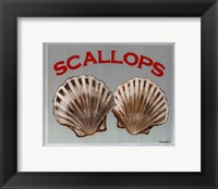 Scallops Framed Print
