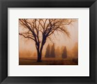 Framed Whisper of Dawn